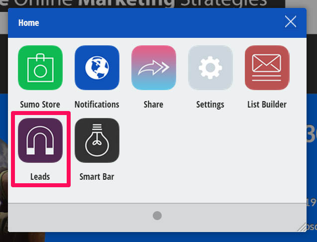 Leads app from SumoMe. Perfect for building content upgrades to grow your email list.