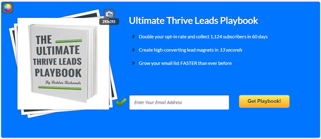 Thrive Leads feature box