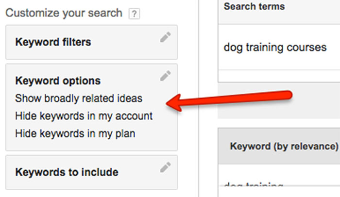 Keyword options in Google Keyword Planner