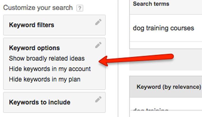 Keyword options in Google Keyword Planner