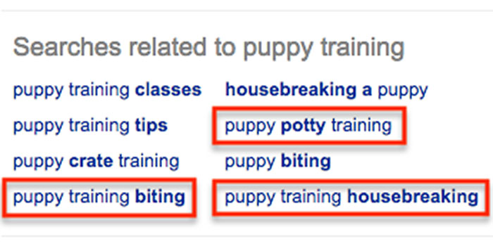 Puppy training related search