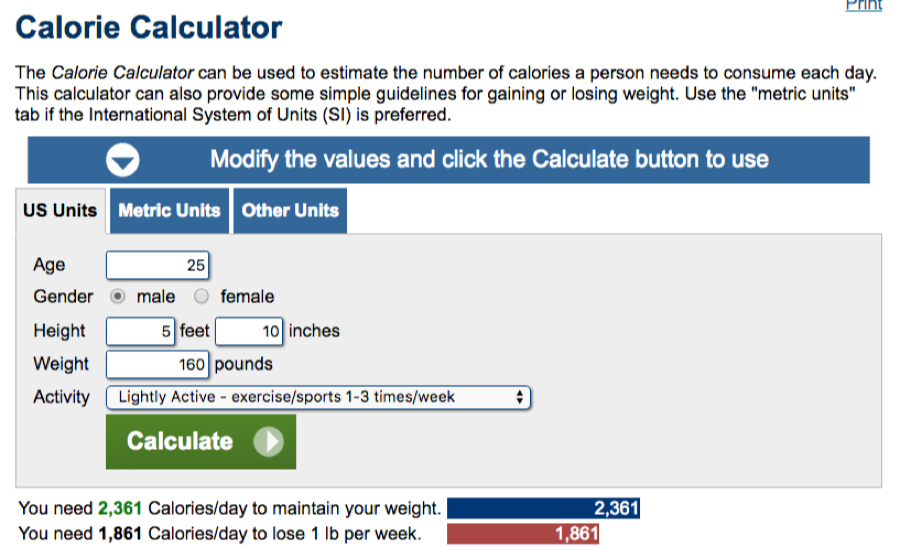 Calorie calculator example