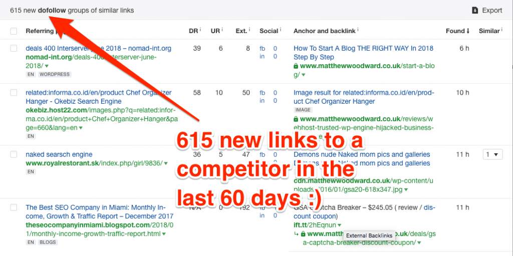 Filtering the New Backlinks report