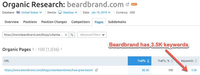 Beardbrand article ranking for 3,500 different keywords