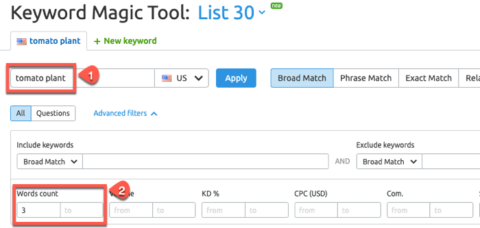 Using the SEMrush Keyword Magic Tool
