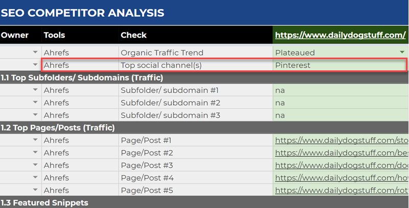 Entering top social channels into the competitor analysis template