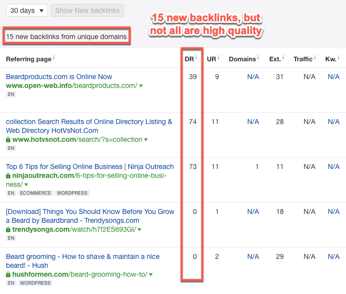 Analyzing New Backlink results in Ahrefs