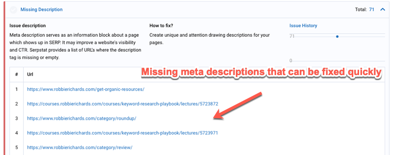 site audit descriptions