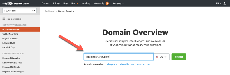 Entering a domain URL into the SEMrush Domain report